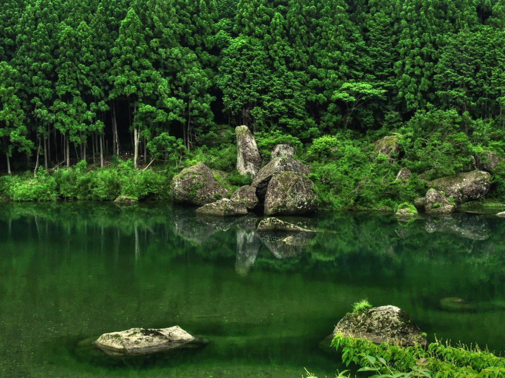 自然豊かな北山村