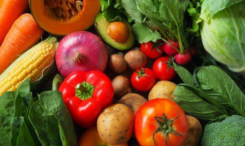 野菜栄養素