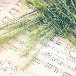 音楽と自然